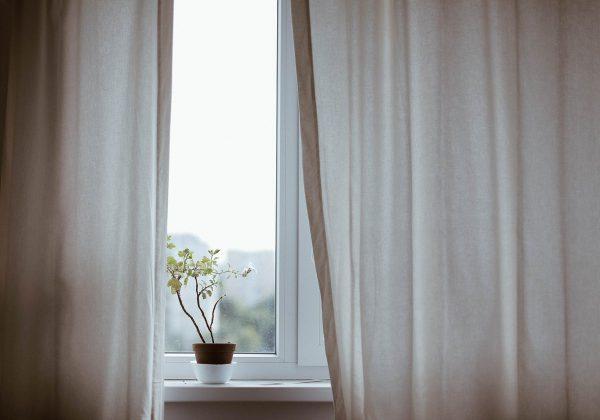 WIKDOOR. Zalety okien drewnianych i plastikowych